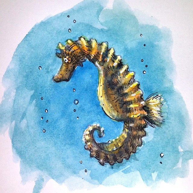 Seahorse Drawing Video